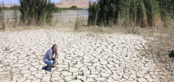Geleceği su ve gıda savaşları belirleyecek!